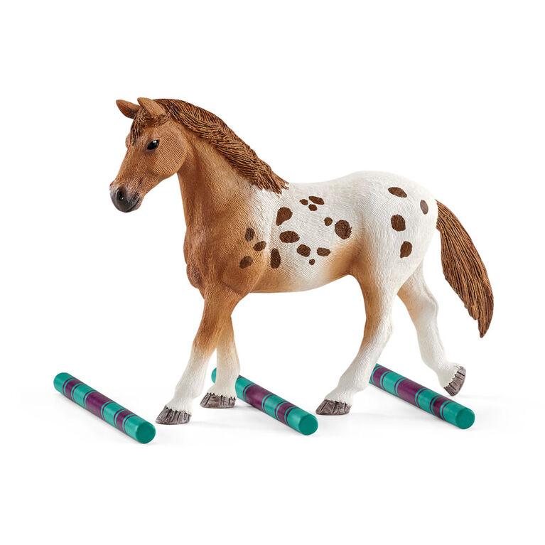 L'entraînement au concours d'Horse Club Lisa
