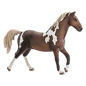 Horse Club - Trakehner Stallion