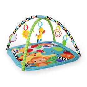 Zippy Zoo Activity Gym