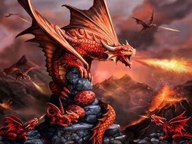 Anne Stokes - Fire Dragon - 500 Piece 3D Puzzle