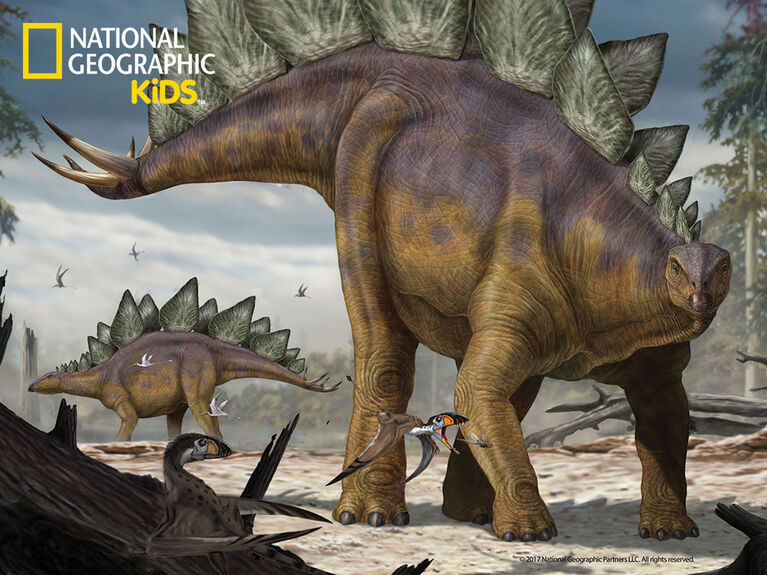 National Geographic - Stegosaurus100Piece Puzzle with figurine