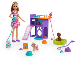 Barbie Team Stacie Doll and Accessories