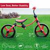 smarTrike Balance Bike