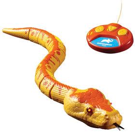 Animal Planet - Python royal radiocommandé - Notre exclusivité