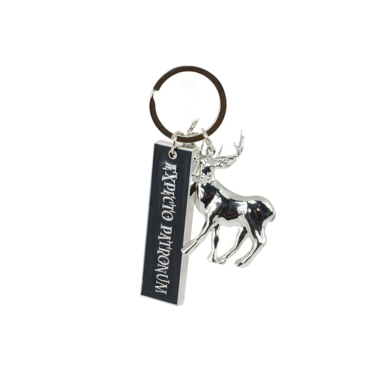 Harry Potter Keychains Blind Box - Colours and styles may vary