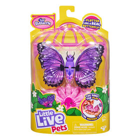 P'tit papillon Little Live Pets - Ailes sublimes