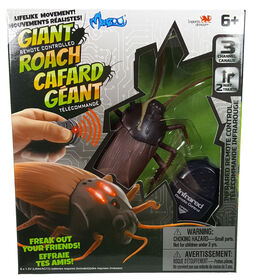 RC Bugs World: RC Bugs with lights up feature - Giant Roach