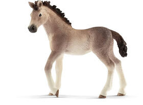 Horse Club - Andalusian Foal