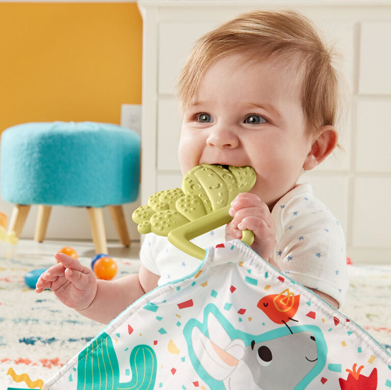 Fisher-Price Teethe & Cuddle Cactus