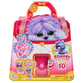 Scruff A Luv'' Cutie Cuts - Purple