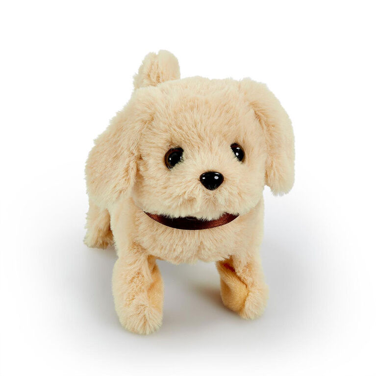 Pitter Patter Pets - Playful Puppy Pal Cream Labrador - R Exclusive - English Edition