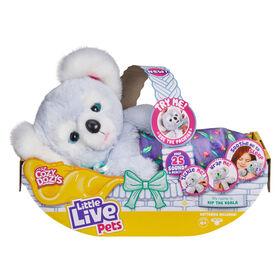 Little Live Cozy Dozy- Kip The Koala - R Exclusive - English Edition