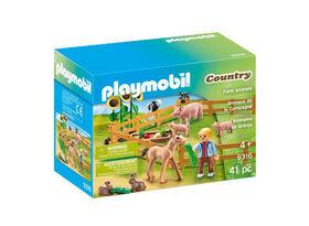 Playmobil - Animaux de la Campagne