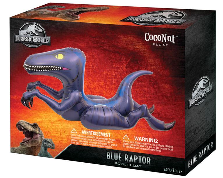 Flotteur de Piscine du Raptor.
