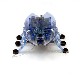 HEXBUG Beetle - Blue