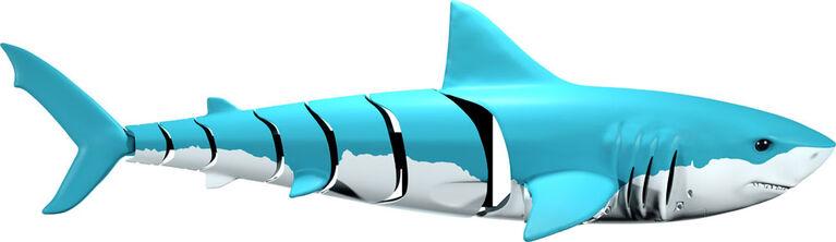 Shark Shark RC