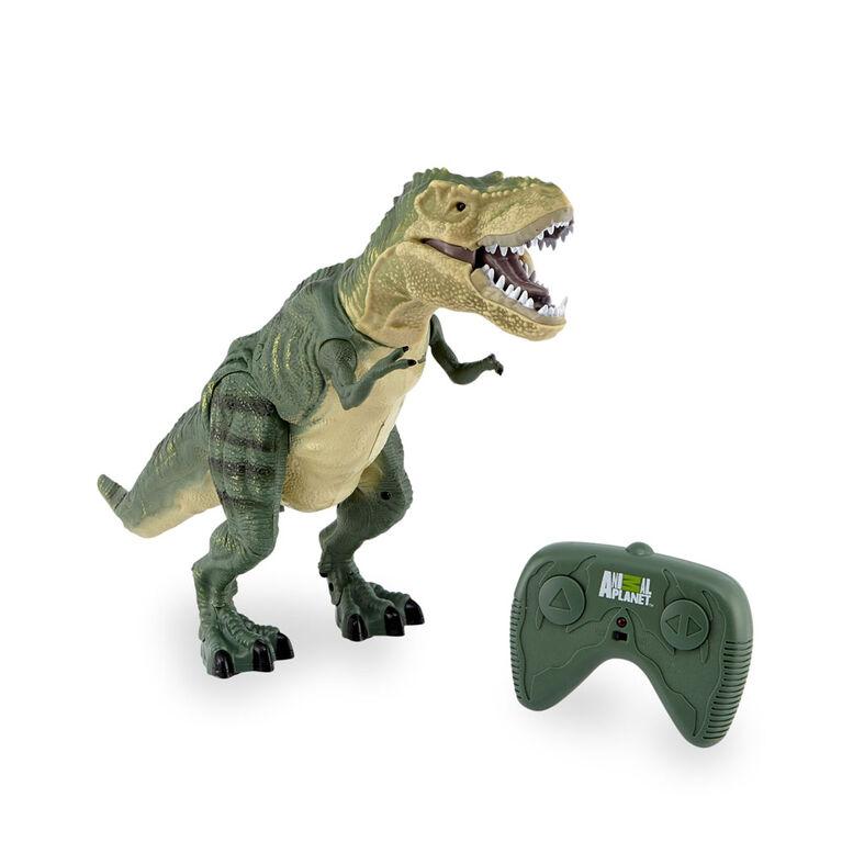 T-Rex féroce téléguidé Animal Planet - Notre exclusivité