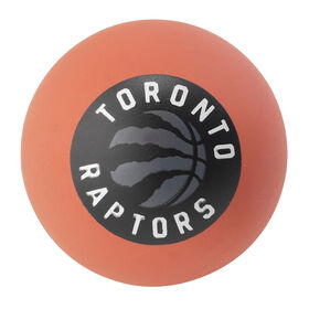 Spalding Spaldeen mini high bounce Raptors Ball