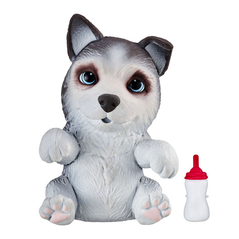 Omg Pets Husky - Huskles