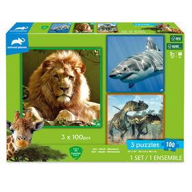3 Puzzles- Lion. Requin. Dinosaures