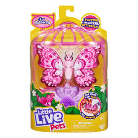 Little Live Pets Lil' Butterfly Single Pack - Precious