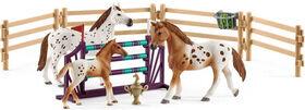 Horse Club - Lisa's Tournament Training Set
