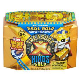 Treasure X: L'Or des rois - Chasseurs