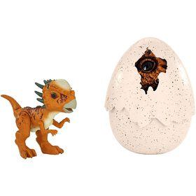 "Jurassic World - Éclosion Dinosaure - Stygimoloch ""Stiggy""."