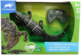 Animal Planet - R/C Alligator Encounter - R Exclusive