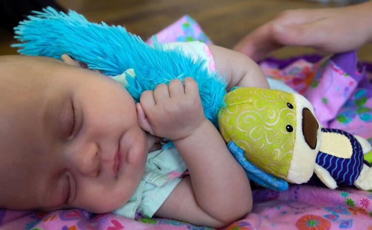 12 po Yoee Baby Chiot