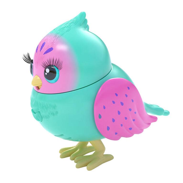 P'tit oiseau et cabane d'oiseau Little Live Pets