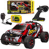 20V Platinum F150 High Speed Rc - English Edition