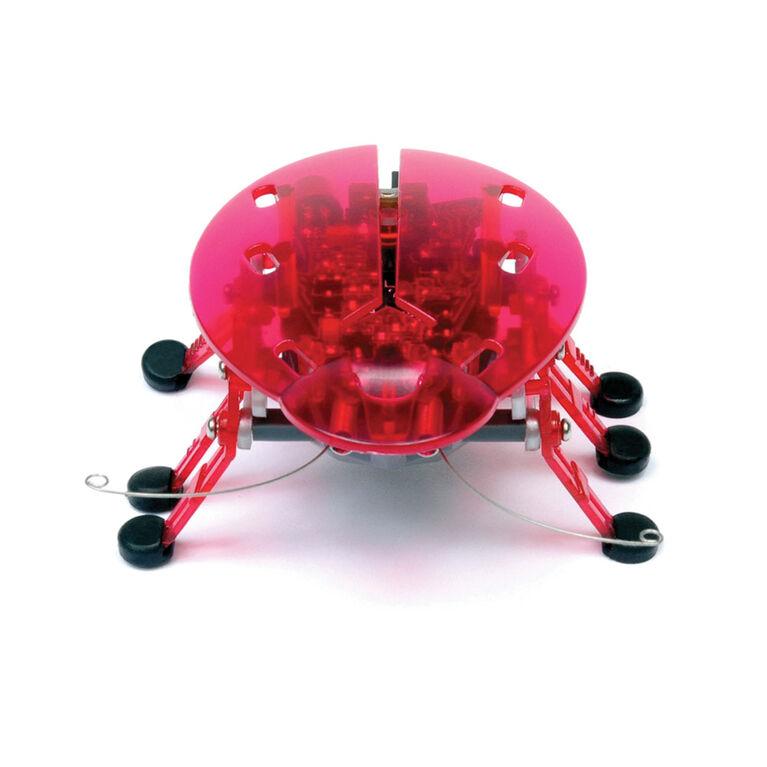 HEXBUG Beetle - Red