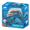 Animal Planet: Dolphin – 100 Piece 3D Puzzle