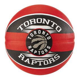 Raptors Team Basketball