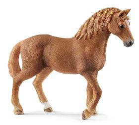 Jument quart de cheval
