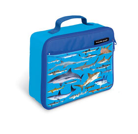 Crocodile Creek Shark Lunchbox