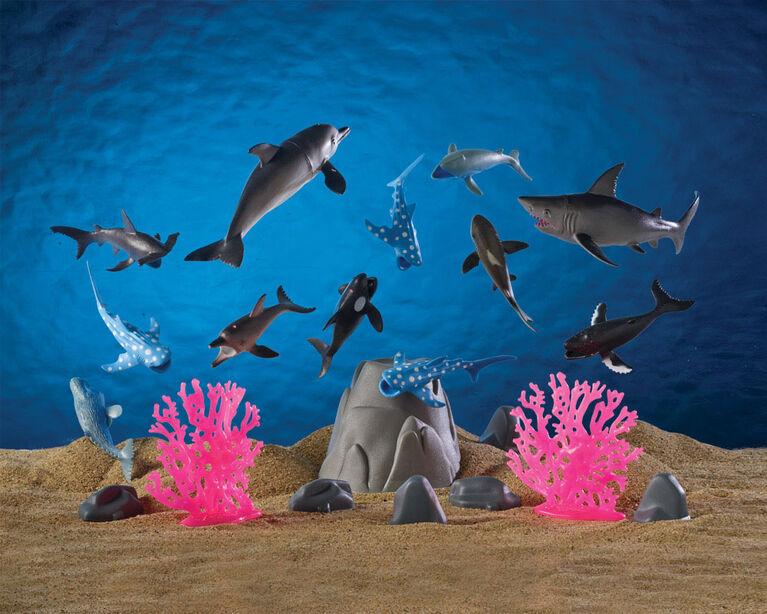 Animal Planet - Collection océan - Notre exclusivité