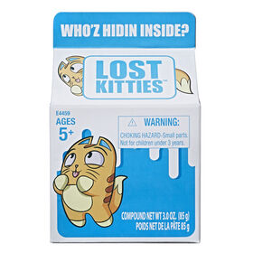 Lost Kitties Blind Box - English Edition - Colours and styles may vary