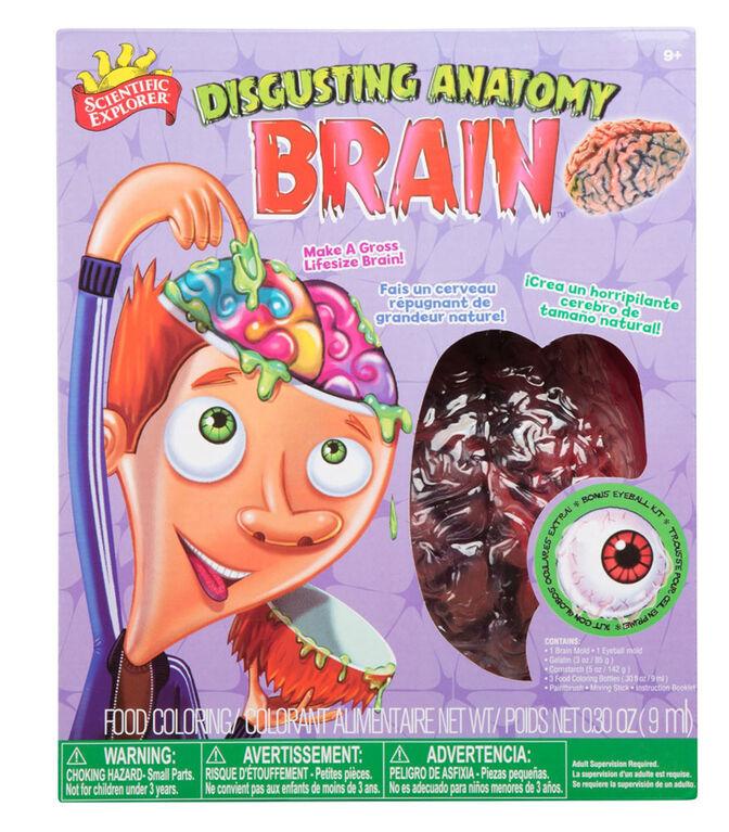 Scientific Explorer - Disgusting Anatomy Brain Science Kit