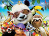 Ceaco: Selfies - Beach Party Panda 550 Piece Jigsaw Puzzle