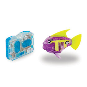 HEXBUG Remote Control Angelfish - Purple